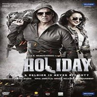 Holiday Album Poster