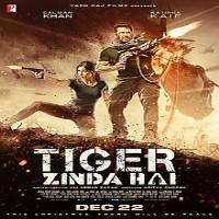 Tiger Zinda Hai Album Poster