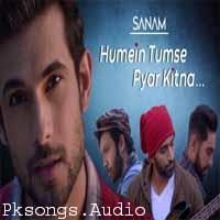 Humein Tumse Pyar Kitna Song Poster
