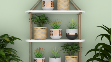 Photo of Benefits of wall planter racks