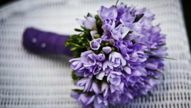 Photo of 6 Best Flowers to Send for Birthday