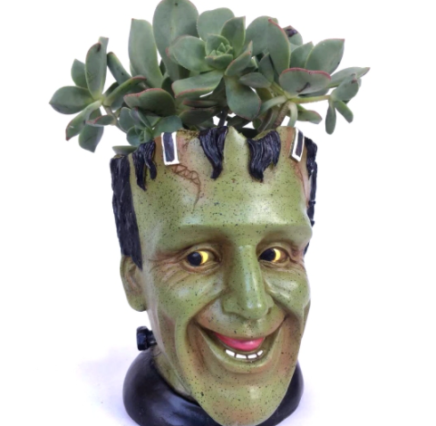 https://promotiongifts.com.au/Father-s-Day-Gift-Pots?search=pot