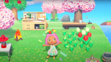 Photo of The Season Difference Between North Hemisphere & South Hemisphere In Animal Crossing New Horizons