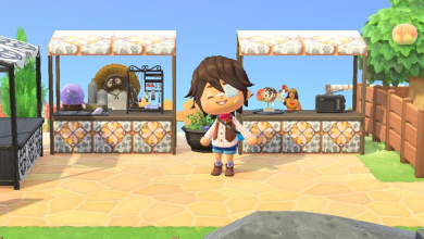 Photo of ACNH Trading Tips: How To Trade With Players In Animal Crossing