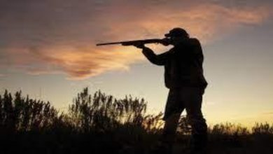 Photo of Best Ways to Stay Safe when Hunting Alone
