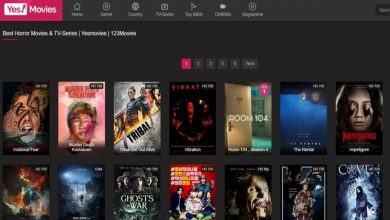 Photo of The 3 Best Free Movie Streaming Websites in 2021