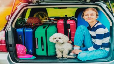 Photo of 15 Items You Should Pack For Your Road Trip with Kids