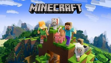 Photo of 6 Things To Consider When Planning To Get A Minecraft