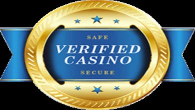 Photo of Factors That Make Casi Go and Other Online Casinos Reliable