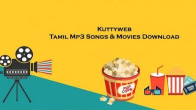 Photo of kuttyweb | kutty web | latest collection movie providing site kuttyweb