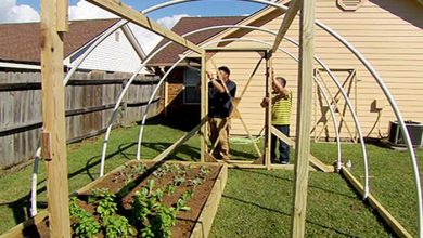 Photo of How to build a high tunnel greenhouse: