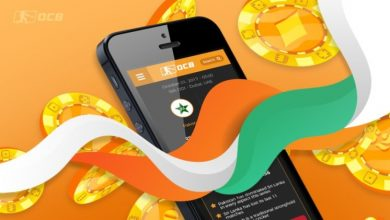 Photo of Best Indian Fantasy Betting Sites to Maximise Winnings and Optimise Odds
