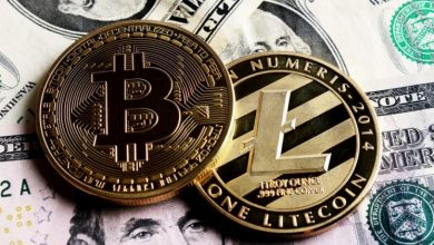 Photo of What is the difference between Litecoin and Bitcoin?